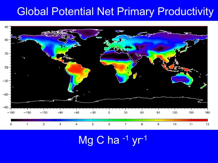 Global Potential Net Primary Productivity