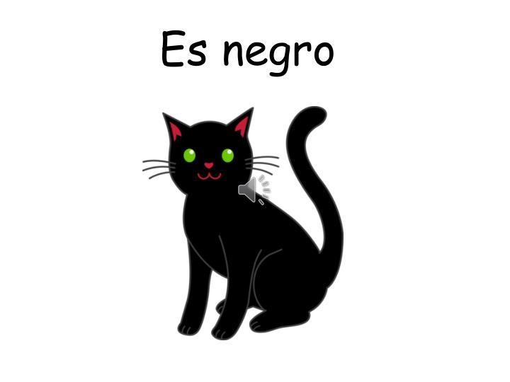 Es negro