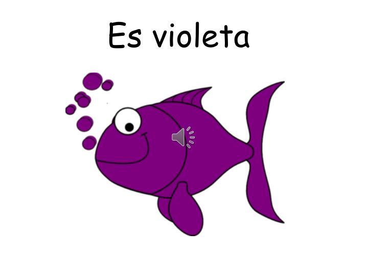 Es violeta