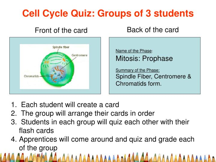 Cell Cycle Quiz: Groups of 3 students
