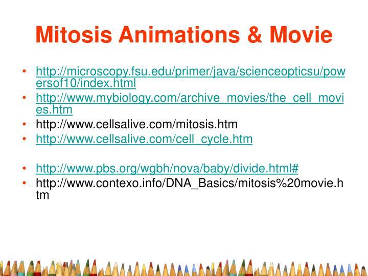 Mitosis Animations & Movie