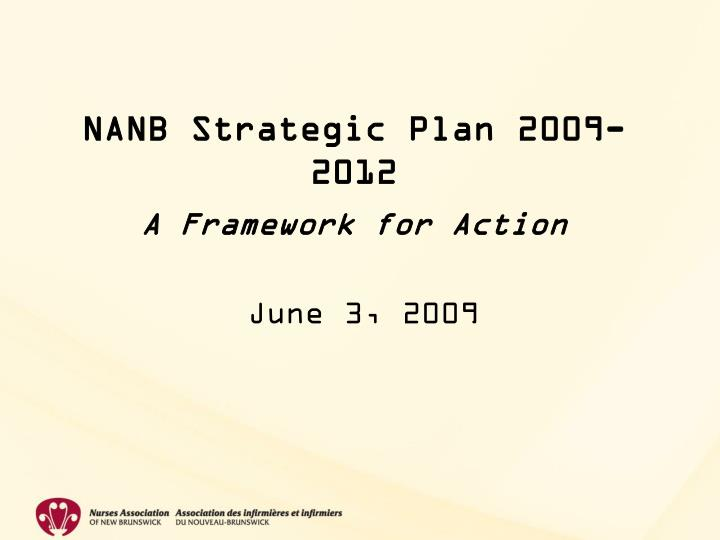Nanb strategic plan 2009 2012 a framework for action