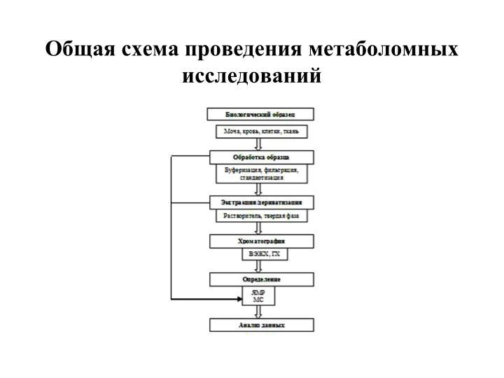 Общая схема проведения метаболомных исследований