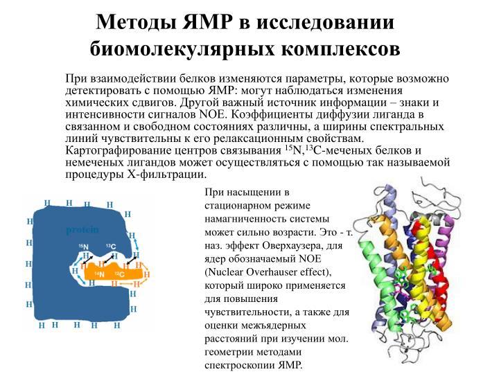 Методы ЯМР в исследовании биомолекулярных комплексов