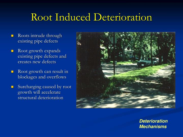 Root Induced Deterioration