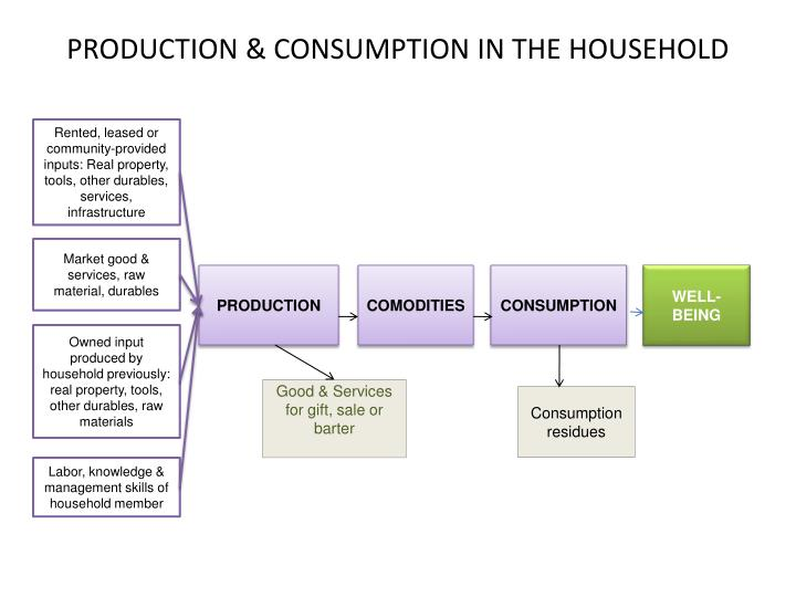 PRODUCTION & CONSUMPTION IN THE HOUSEHOLD