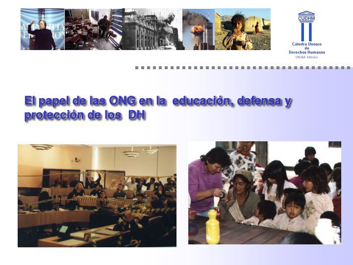 El papel de las ONG en la