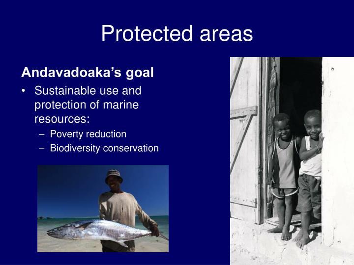 Andavadoaka's goal