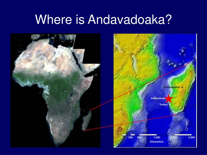 Where is andavadoaka