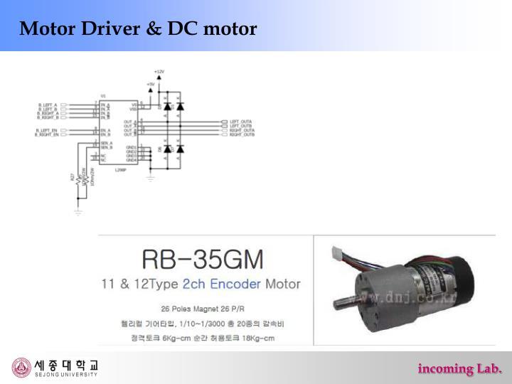 Motor Driver & DC motor