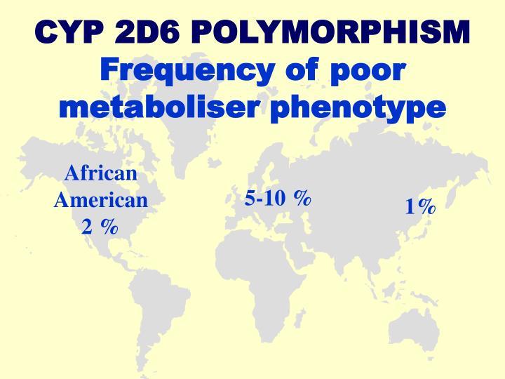 CYP 2D6 POLYMORPHISM