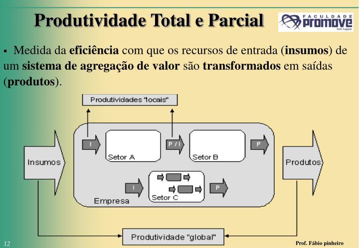 Produtividade Total e Parcial