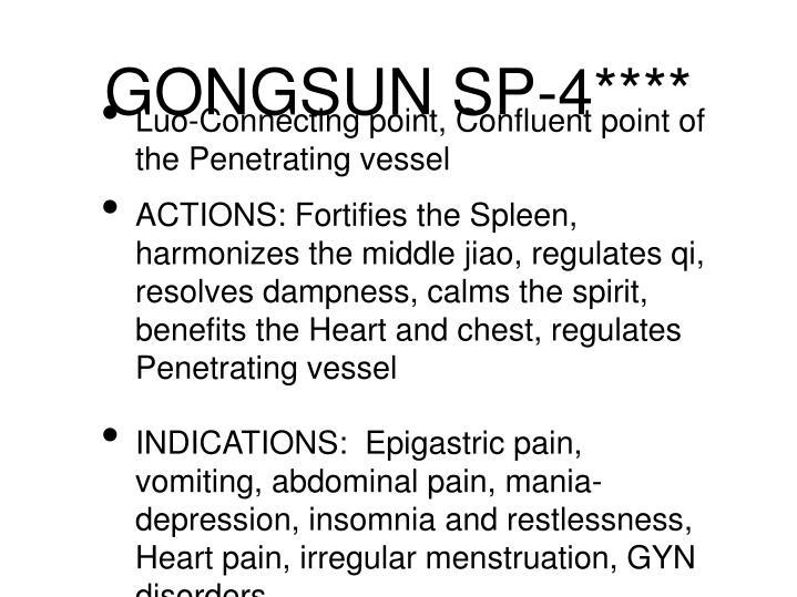 GONGSUN SP-4****