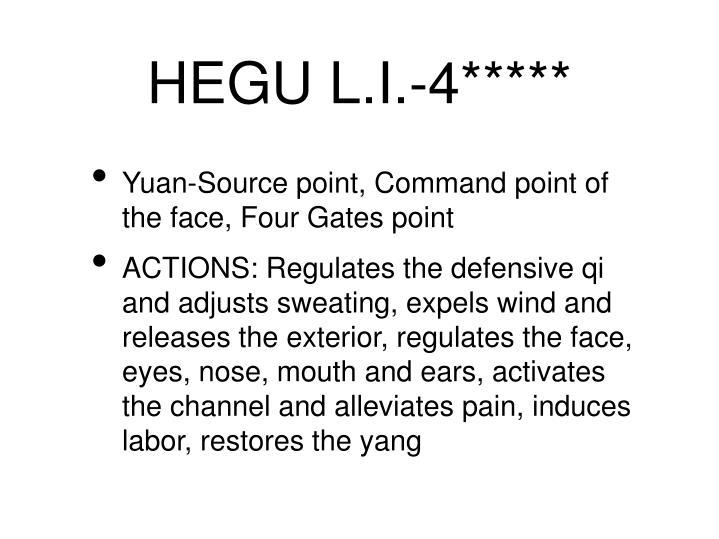 HEGU L.I.-4*****