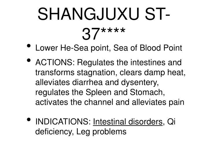 SHANGJUXU ST-37****