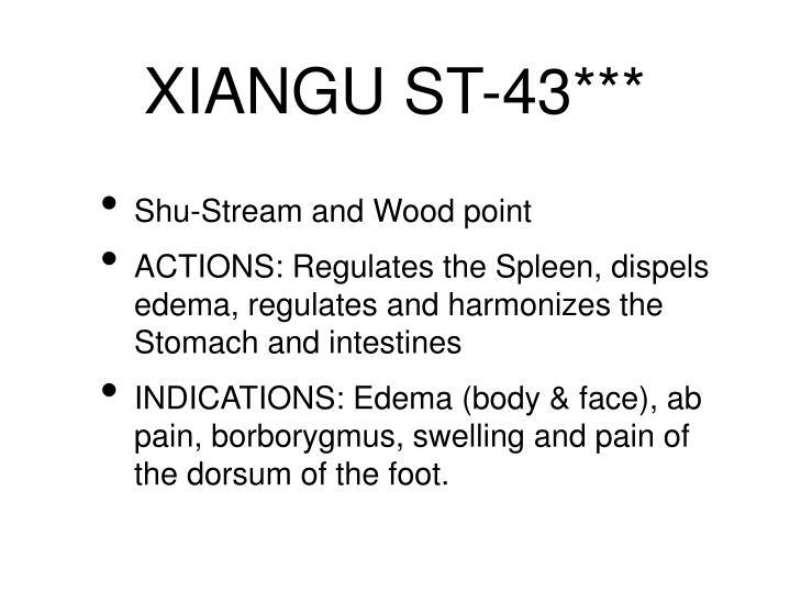XIANGU ST-43***