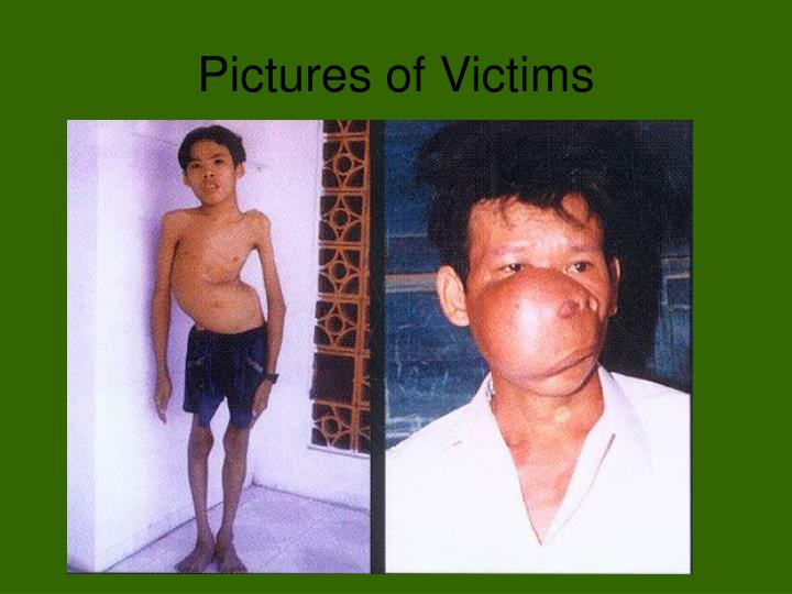Pictures of Victims