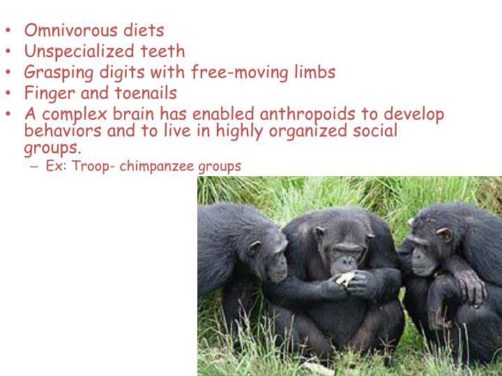 Omnivorous diets