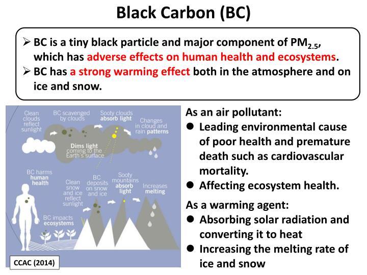 Black Carbon (BC)