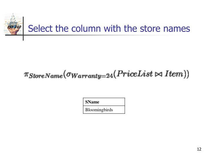 Select the column with the store names