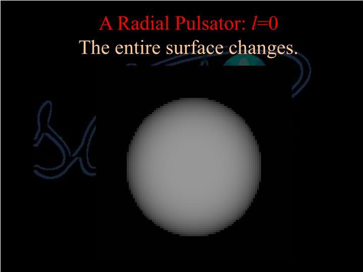 A Radial Pulsator: