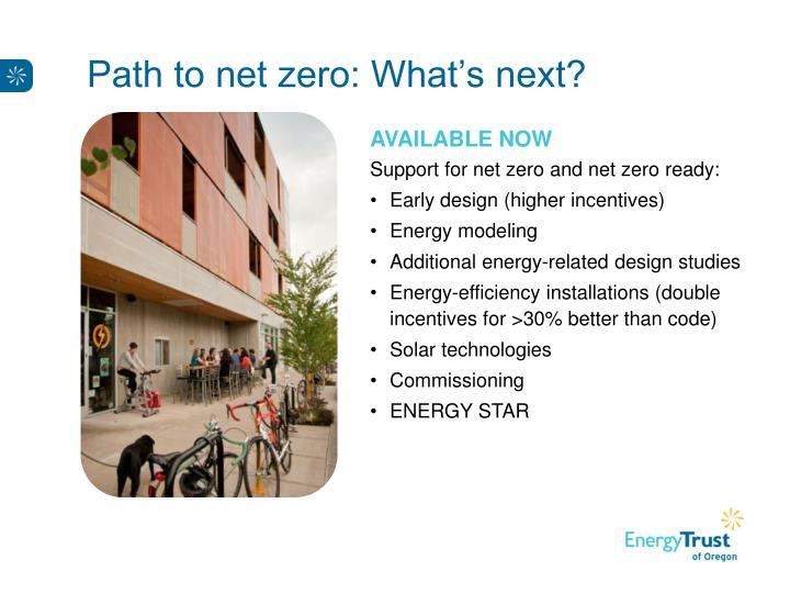 Path to net zero: What's next?