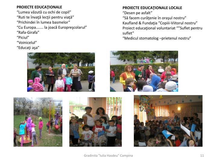 PROIECTE EDUCAŢIONALE