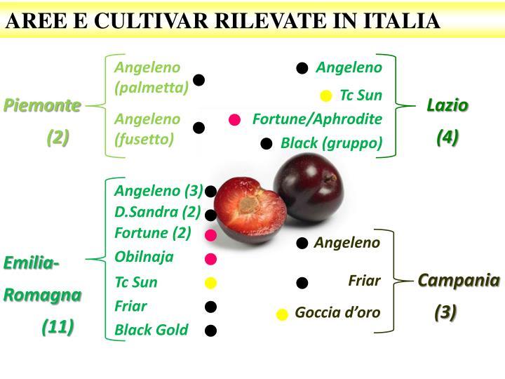 AREE E CULTIVAR RILEVATE IN ITALIA