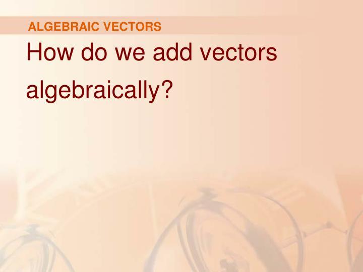 ALGEBRAIC VECTORS