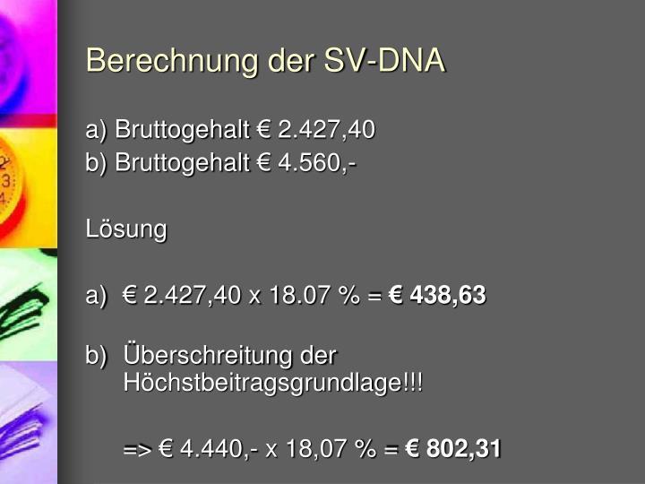 Berechnung der SV-DNA