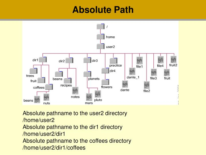Absolute Path