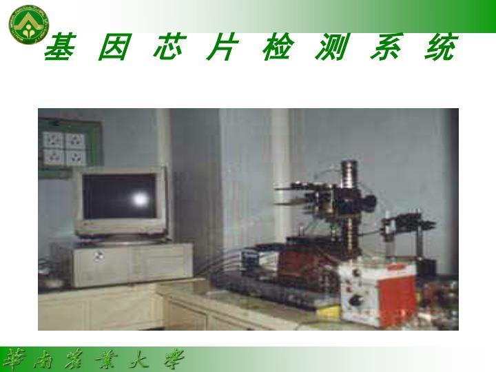 基因芯片检测系统