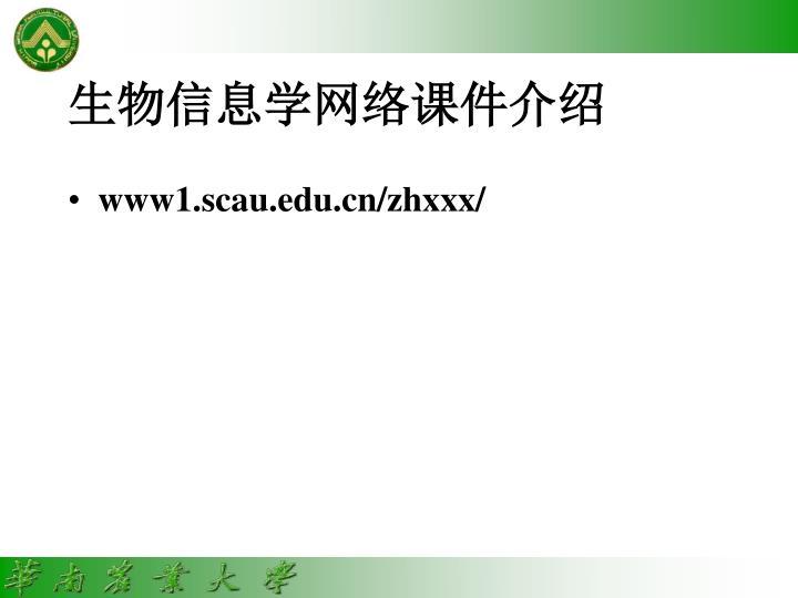 生物信息学网络课件介绍