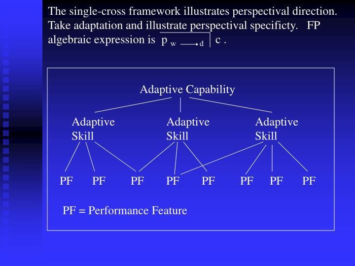 The single-cross framework illustrates perspectival direction.  Take adaptation and illustrate perspectival specificty.   FP algebraic expression is  p