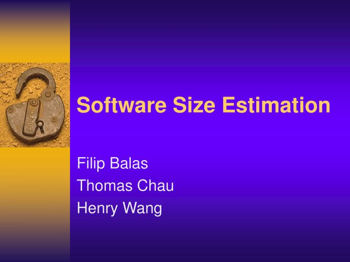 Software size estimation