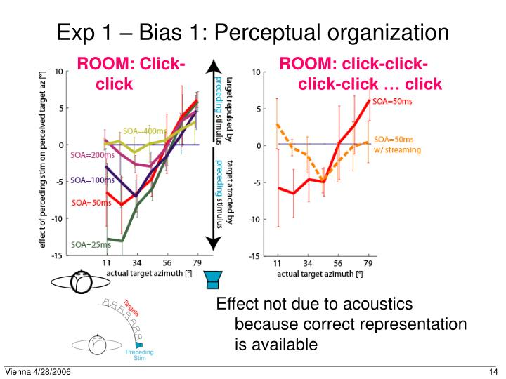 Exp 1 – Bias 1: Perceptual organization