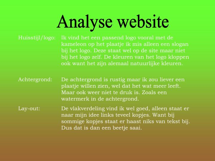 Analyse website