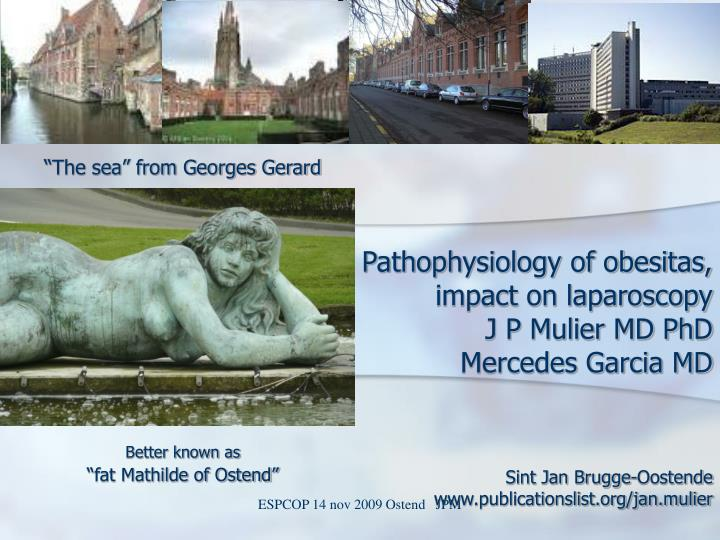 Pathophysiology of obesitas impact on laparoscopy j p mulier md phd mercedes garcia md