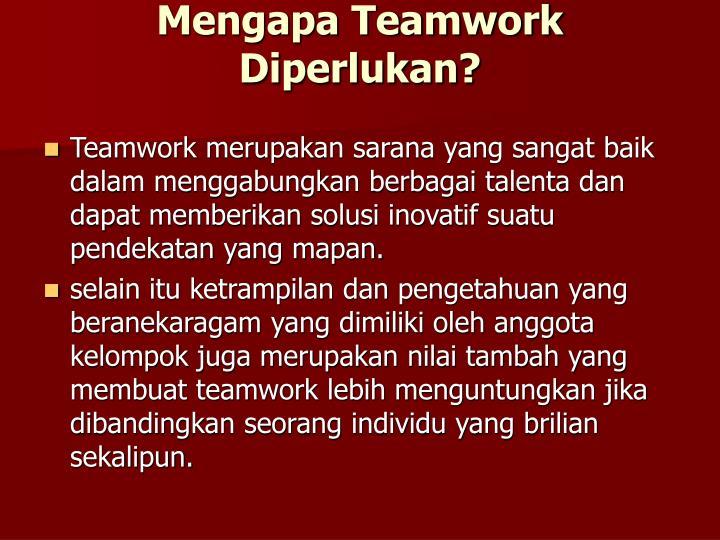 Mengapa Teamwork Diperlukan?