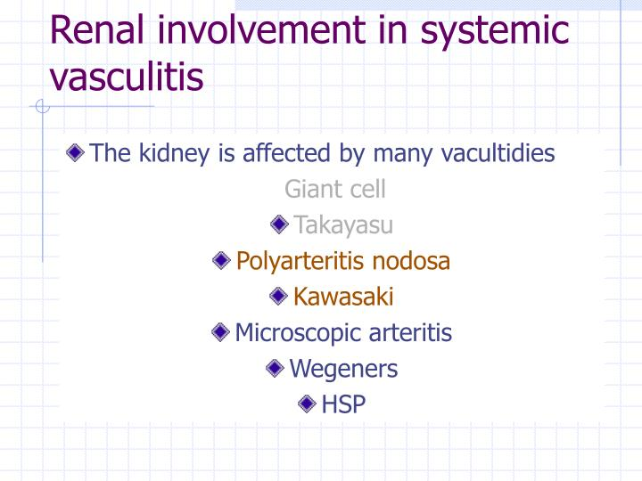 Renal involvement in systemic vasculitis
