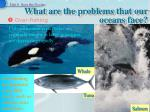 what are the problems that our oceans face2
