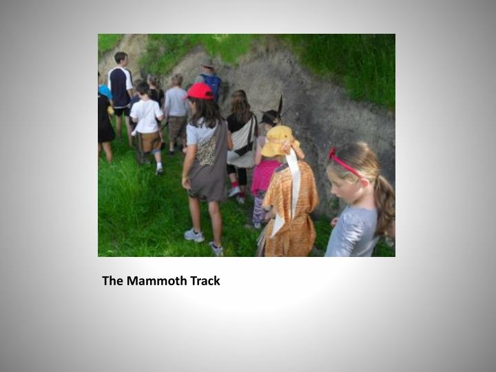 The mammoth track