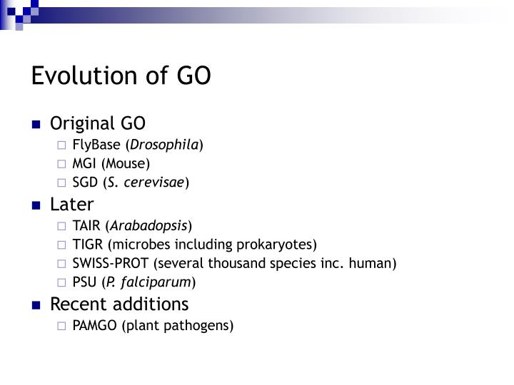 Evolution of GO