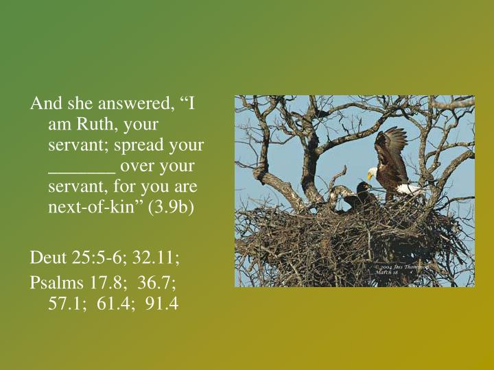 "And she answered, ""I am Ruth, your servant; spread your _______ over your servant, for you are next-of-kin"" (3.9b)"