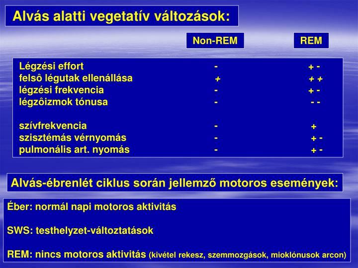 Alvás alatti vegetatív változások: