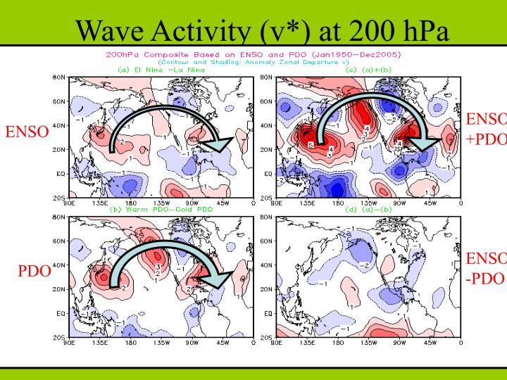 Wave Activity (v*) at 200 hPa