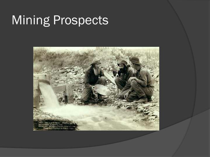 Mining Prospects