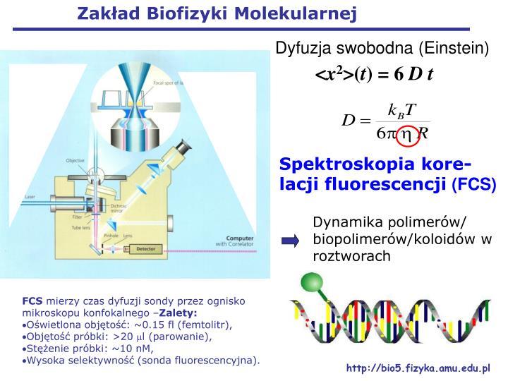 Zakład Biofizyki Molekularnej