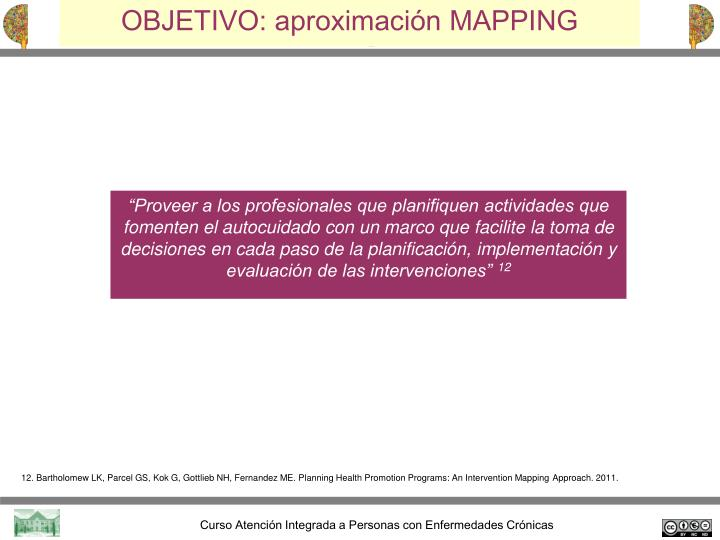 OBJETIVO: aproximación MAPPING