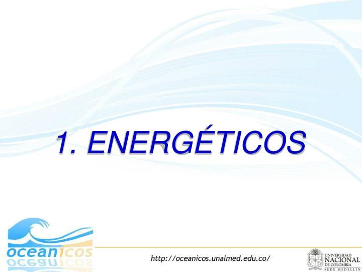 1. ENERGÉTICOS